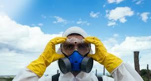 profesionales en control de plagas